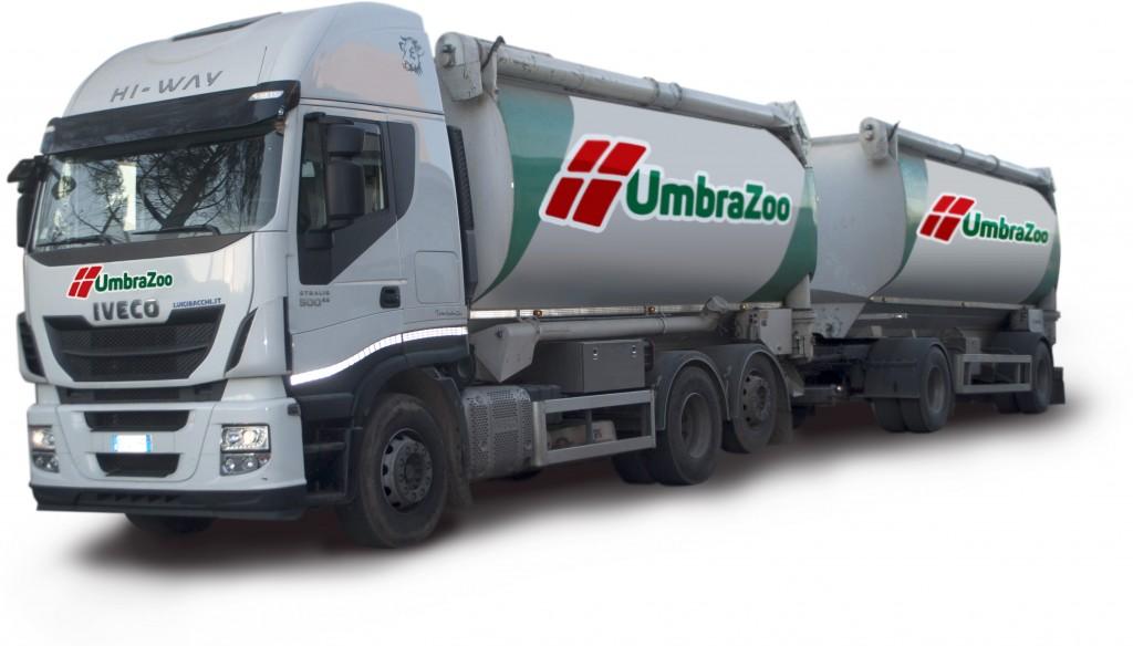 camion copia