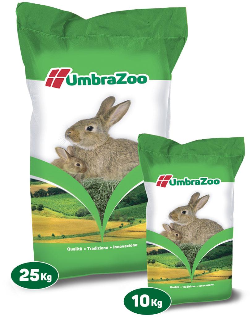 foto ssacchi conigli