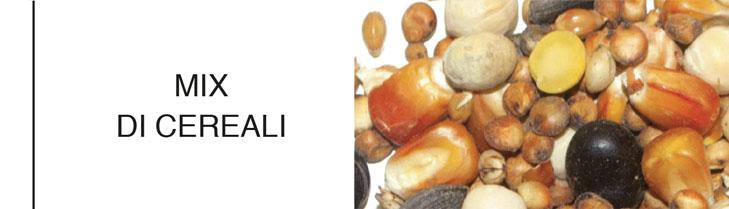 granaglie e spazzati_mix di cereali